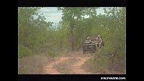 Diana, Outdoor Ganbang in the Kruger Park... thumbnail