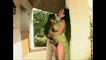 BRAZIL SHEMALE WHORE e amigos - download porn videos