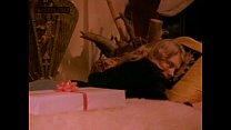 Swedish Erotica 91 - Shauna Grant (1980s) preview image