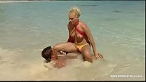 Image: Kathy Anderson Goes Wild On a Tropical Beach...