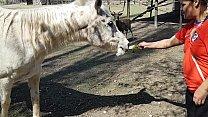 Fiquei toda molhada ao ver o tamanho do membro de um cavalo !!! Queria que meu namorado fosse assim !!! Paty Bumbum, El Toro De Oro Thumbnail