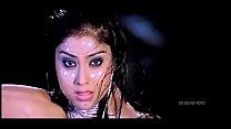 Screenshot Shriya Saran Hot Sexy Compiling