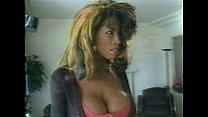 LBO - Bra Busters 04 - scene 3 - video 1 porn thumbnail