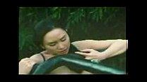 Asian Scandals pornhub video