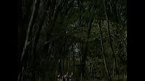 Snow white and 7 dwarfs thumbnail