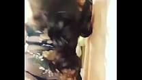 8307 شرموطة مصرية ترقص ناااااااااااااار preview