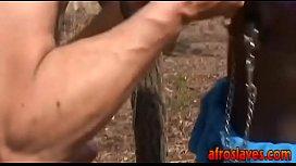African slave gives master...