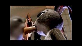 Judy hopps vs lola...