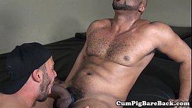 Unsaddled black bear doggystyling...