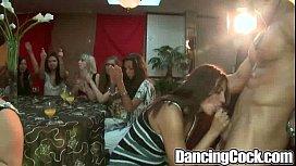 Dancingcock Ballroom Blitz.p16...
