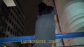 Luscious Ladyboy Looks Like...