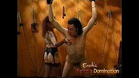 Kinky stallion has his...