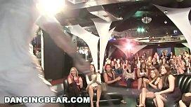 DANCING BEAR - Wild Party...