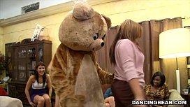 Remy's Dancing Bear...