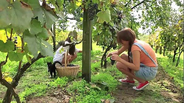 VivThomas – Vine – Hannah Sweet, Subil Arch