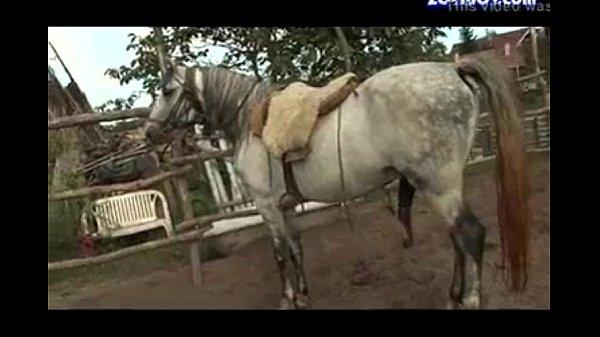 Horse And Girl Sex: Xvideos.com 01f786997247e92bca5ac6ded1faba86-1