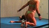 Flamingo Mixed Wrestlin...