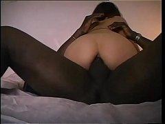 pussy_1995063