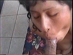 pussy_2215210