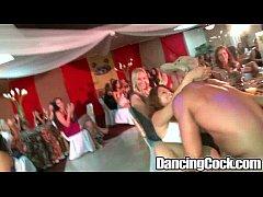 Dancingcock Ballroom Blitz.p16