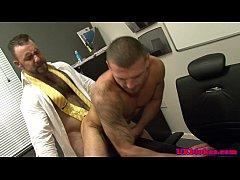 Bear Bruno Knight shags...