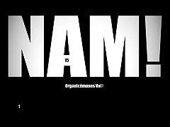NAM 12 - Organicemonos 1
