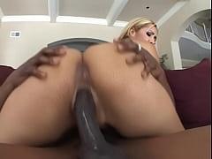 pussy_2110895