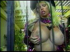 pussy_2212064