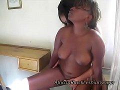 pussy_1929951