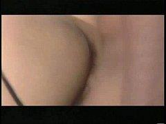 pussy_443922