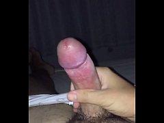 pussy_1206922