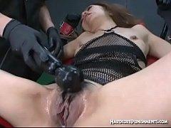 pussy_2180455