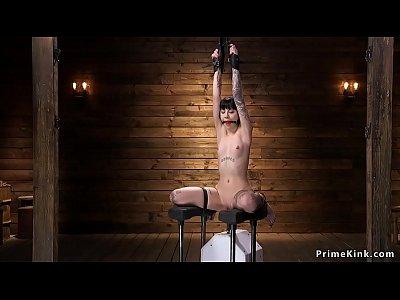 Tied up alt spinner fucks anal machine