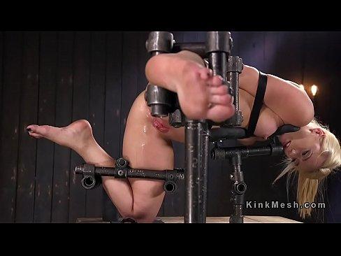porn video HD Big lick veterinary service