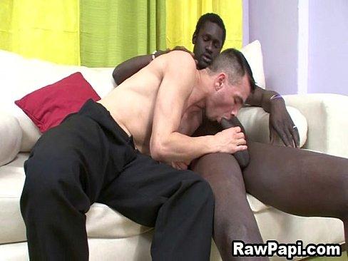 Gay black and latino dick and cock